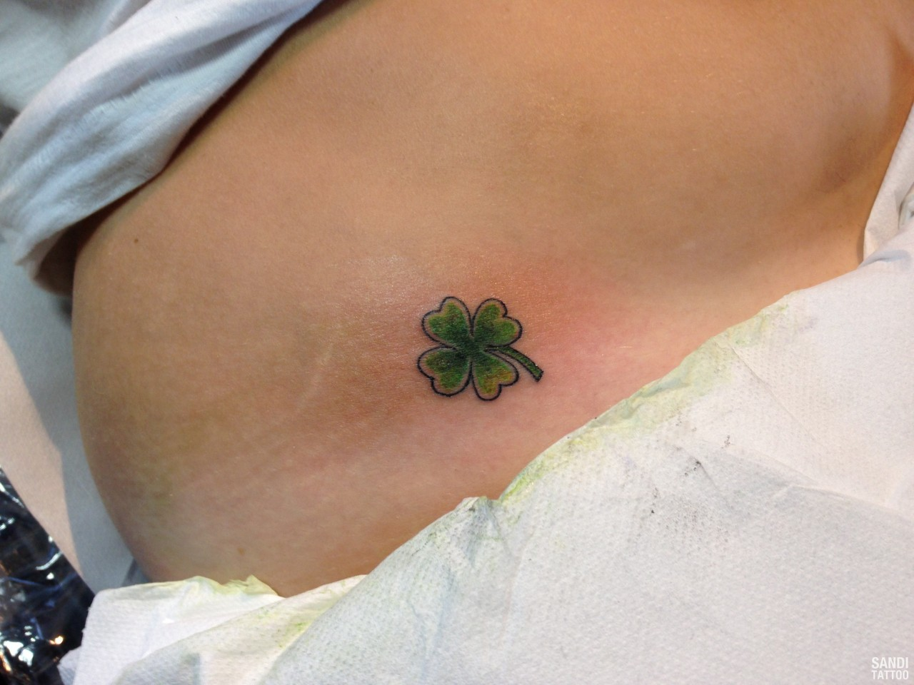 Loro Significato Fortuna Bordeo Tattoo Tattoos In Lists For Pinterest